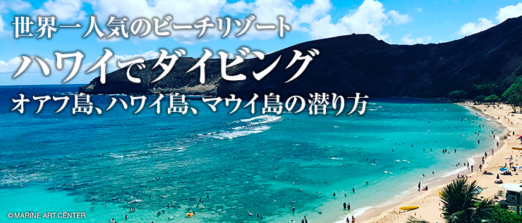 オアフ 島 から ハワイ 島