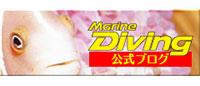 マリンダイビング公式ブログ