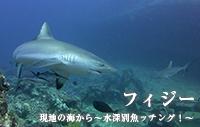 現地の海から~水深別魚ッチング!~ フィジー