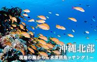 現地の海から~水深別魚ッチング!~ 沖縄北部