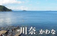 東京から2~3時間でウミガメに会える海 川奈 かわな