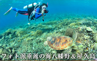 フォト派垂涎の海 八幡野&屋久島
