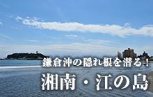 鎌倉沖の隠れ根を潜る! 湘南・江の島