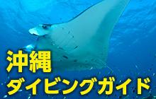 沖縄基本情報