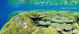 パプアニューギニア基本情報