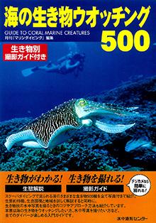 海の生き物ウォッチング500