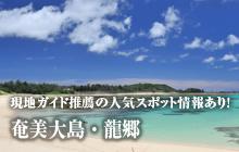 現地ガイド推薦の人気スポット情報あり! 奄美大島・龍郷