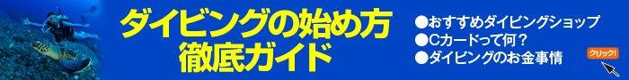 ダイビングの始め方徹底ガイド(大)