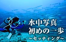 水中写真 初めの一歩 ~セッティング~