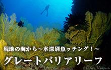 現地の海から~水深別魚ッチング!~ グレートバリアリーフ