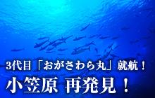 3代目「おがさわら丸」就航! 小笠原 再発見!