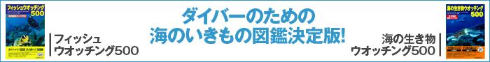 海のいきもの図鑑(大)