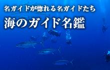海のガイド名鑑