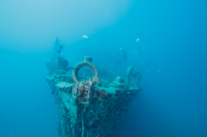 沈船ダイブで、気分はパイレーツ オブ…?!