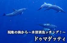 現地の海から~水深別魚ッチング!~ドゥマゲッティ