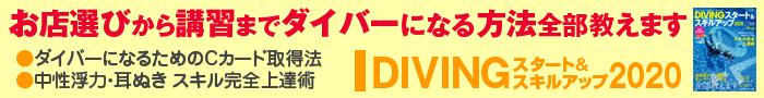 DIVING スタート&スキルアップ(大)