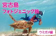 宮古島フォトジェニック旅 Vol.1ウミガメと記念撮影♪