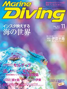 マリンダイビング2017年11月号(海ガール)