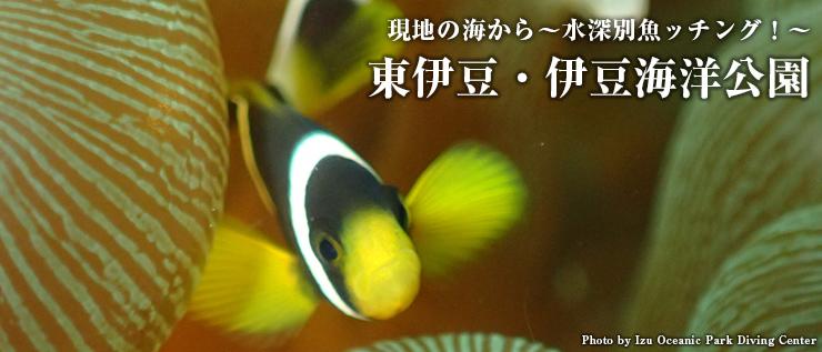 東伊豆・伊豆海洋公園
