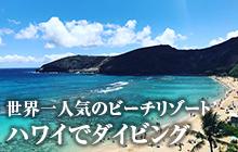 ハワイでダイビング♪ オアフ島、ハワイ島、マウイ島の潜り方