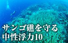 サンゴ礁を守る中性浮力10