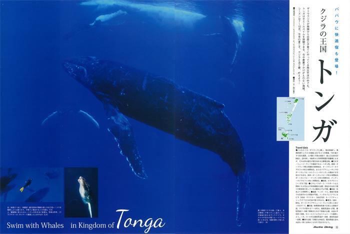 クジラの王国 トンガ