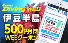 おトクに潜ろう!!  伊豆半島500円引きWEBクーポン