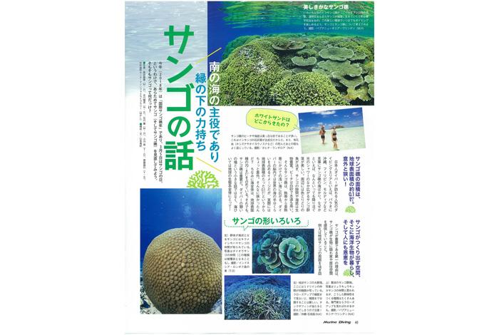 サンゴの話
