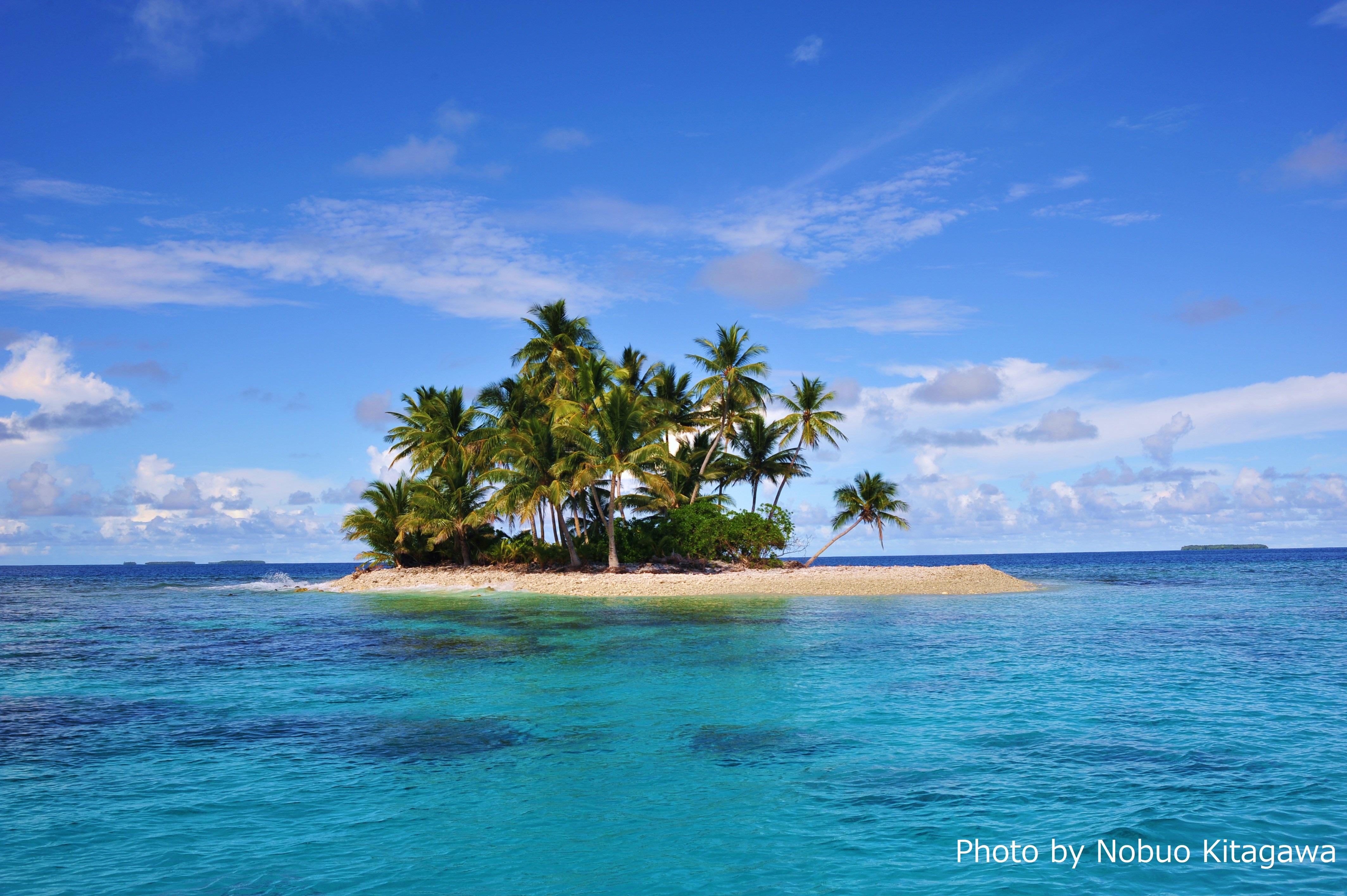 これぞ南の島! 「シャークアイランド」もチュークに属する。名前通り、周りにはサメがいっぱい。
