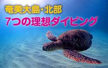 奄美大島・北部で叶える7つの理想ダイビング