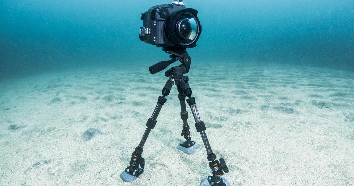 《INON》より水中用三脚システムパーツ販売