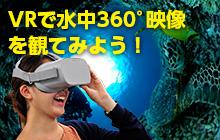 水中360°動画を撮ったらVRで楽しもう!