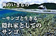 海のいきもの 第47回 隠れ家としてのサンゴ