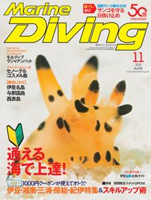 マリンダイビング2018年11月号(海ガール)