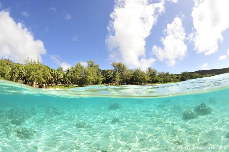ハッピーになれる色合い「オブジャンビーチ」