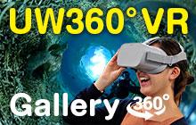 UnderWater 360˚ VR Gallery