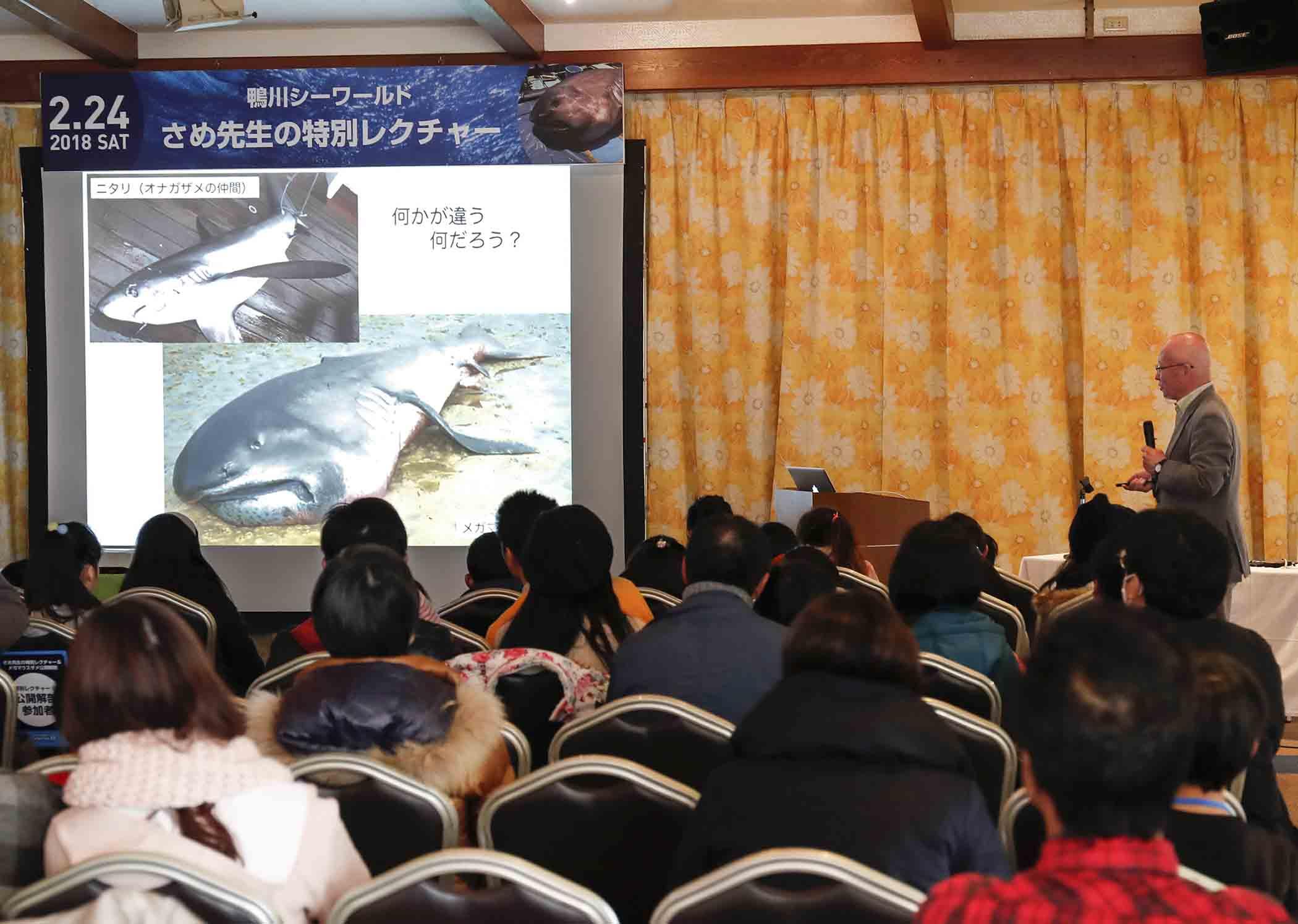 シャチやイルカ、アシカ、ベル―ガのショーや海の生物が展示された《鴨川シーワールド》は家族で楽しめる場所だ