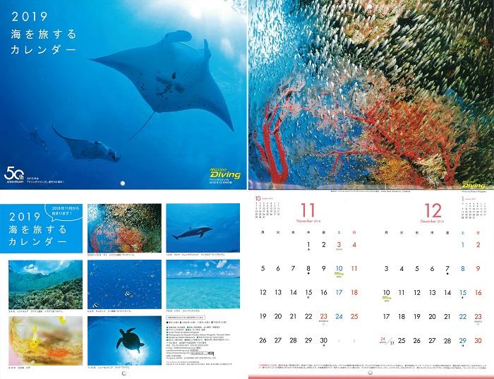 特別付録<br /> 2019海を旅するカレンダー