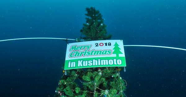 ~現地の海から~ 串本