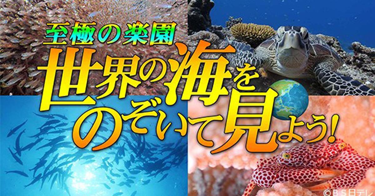 「世界の海をのぞいて見よう!2」 グアム&大瀬崎