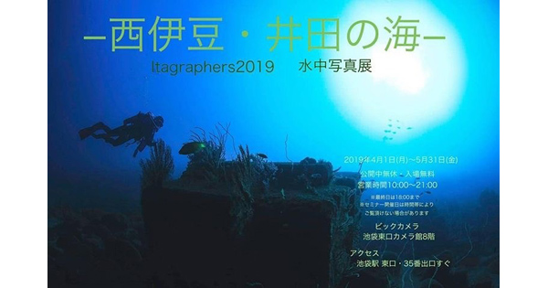 池袋で水中写真展「西伊豆・井田の海」