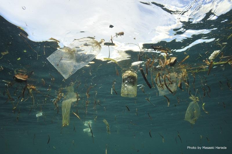 インドネシアの海に浮かぶゴミ ウミガメやイルカ・クジラがクラゲと間違えて食べてしまうというビニール袋がこんなに