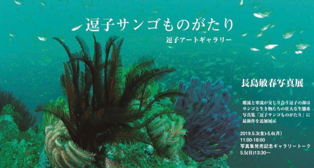 長島敏春さん写真展「逗子サンゴものがたり」