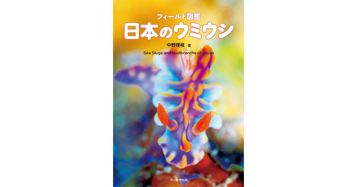 中野理枝さん 図鑑『日本のウミウシ』発売