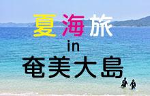 夏海旅in奄美大島でフォトジェニック三昧の旅