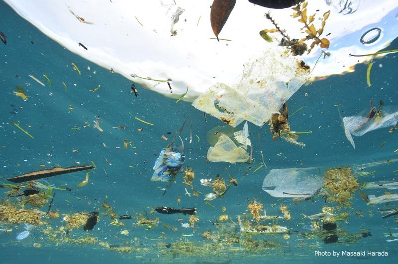 プラスチックゴミが浮かぶインドネシア・メナドの海