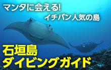 石垣島ダイビングガイド