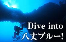 八丈島ダイビングで「八丈ブルー」のトリコになる