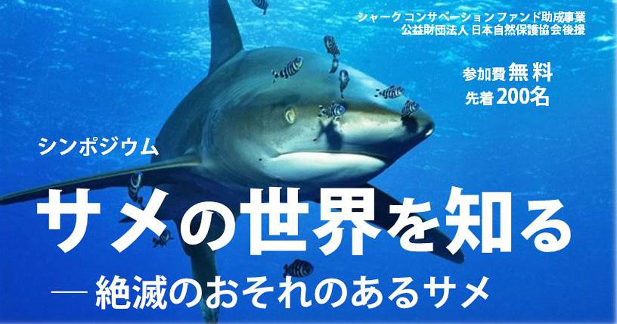 サメ好き集合! サメの世界を知るシンポジウム