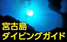 神秘の地形ダイビング!宮古島のダイビング/グルメ/ホテル/アクセス情報